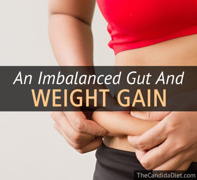 Gut flora and weight gain