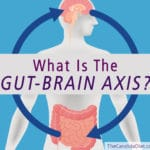 What Is the Gut-Brain Axis, And Why Does It Matter?