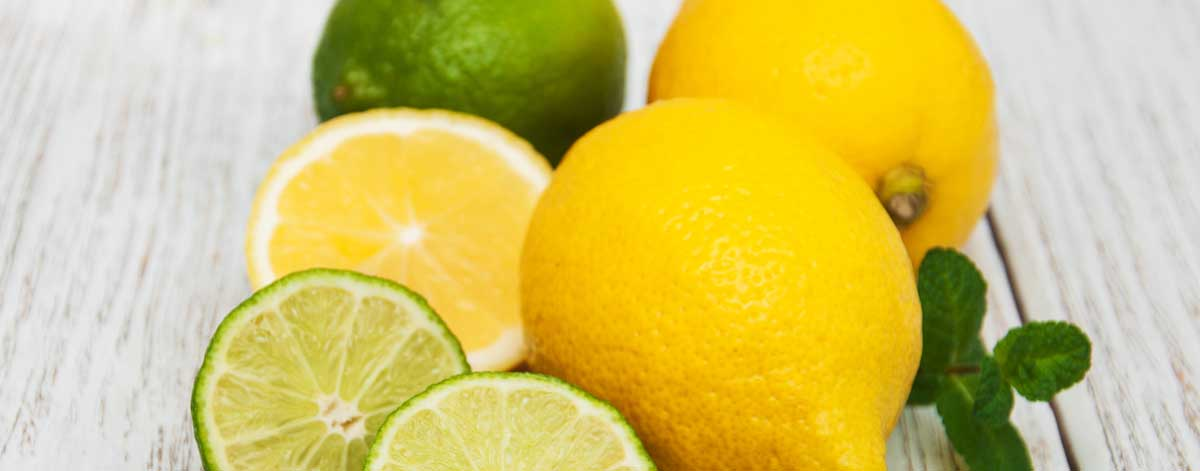 Fruits to eat on the Candida diet: Avocado, Lemons, Lime, and Olives