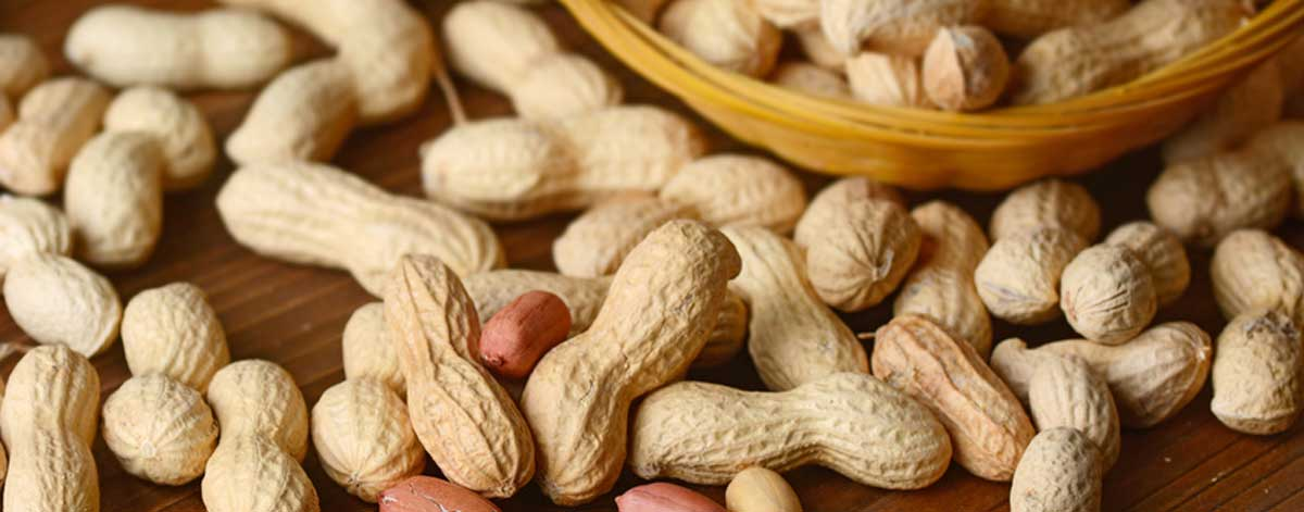 Moldy nuts are one of the foods to avoid on the Candida diet.