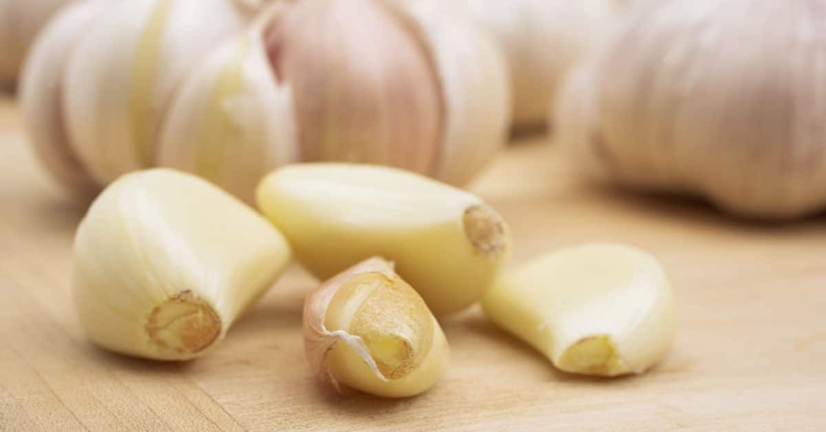 Garlic supplements and food - antifungal and antibacterial properties